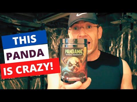 Stim Junkie Panda 🐼 Panda Supps PANDAMIC Review