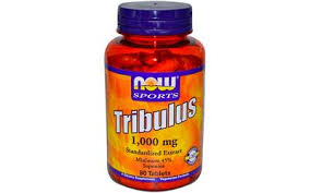 Testosterone - NOW Foods Tribulus 1000mg 90 Tablets only for $10.19