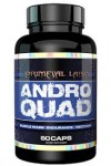 Andro Quad Post (SARM) + FREE Mega Cycle $48 w/Coupon
