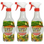 3/pk Veggie Wash Sprayer - <span> $12 Shipped</span>