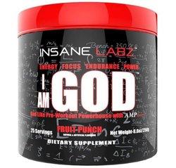 Insane Labz - I AM GOD