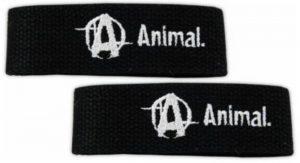 Universal : Animal Lifting Straps